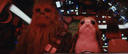 Chewie & a Porg