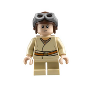 Anakin LEGO Master 23