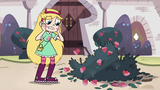 S3E11 Star Butterfly looking at the ruined roses