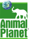 Animal Planet 1997
