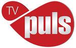 TV Puls (obecne logo)
