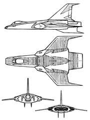 Fighter blacktiger