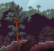 Lava biome surface