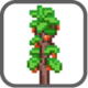 Nav-plants