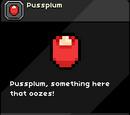 Pussplum