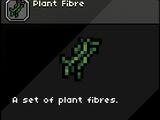 Plant Fibre