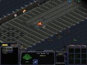 StarCraft Traps