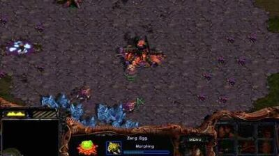 Starcraft - Zerg Mission 1 Among the Ruins