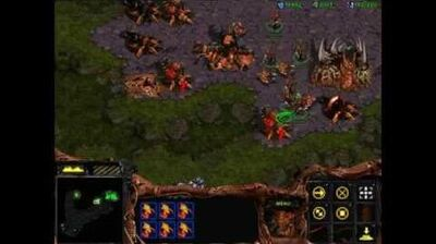 Starcraft 1 Insurrection - Zerg 04 - Fury