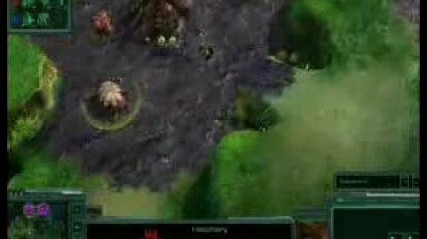Blizzcon Match 1 - SC2 - Yellow vs Sonkie 1 2