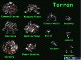 StarCraft beta