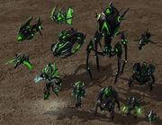 Taldarim Dark Units SC2 Rend