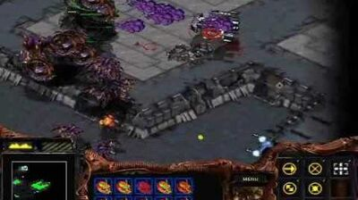 Starcraft Brood War - Zerg Mission 10 Omega + Ending + Credits