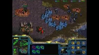 Starcraft 1 Insurrection - Protoss 03 - Infestation at New Dresdin