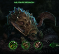 Roach SC2-HotS Story1.png