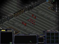 StarCraft T04