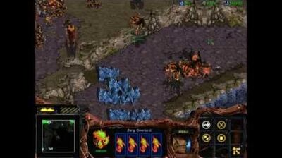 Starcraft 1 Insurrection - Zerg 07 - The Infestation