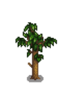 Персиковое дерево 4
