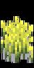 Пшеница 4
