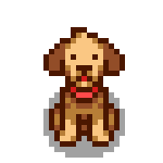 Собака2