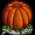Гигантская тыква