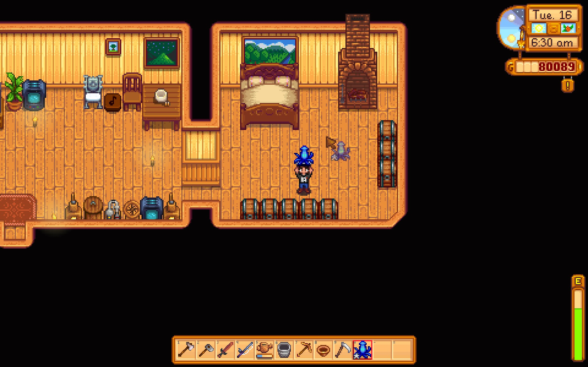 stardew valley how to get a squid