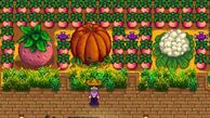 Stardew-valley-guide-tips-how-to-grow-a-giant-crop-on-the-farm-fairy-witch-during-the-night