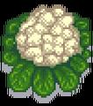 Гигантская цветная капуста
