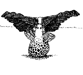File:Plant bird.png