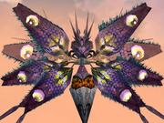 Aparoid Moth