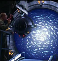 Asgard directed energy weapon1.png
