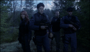 Sheppard's team