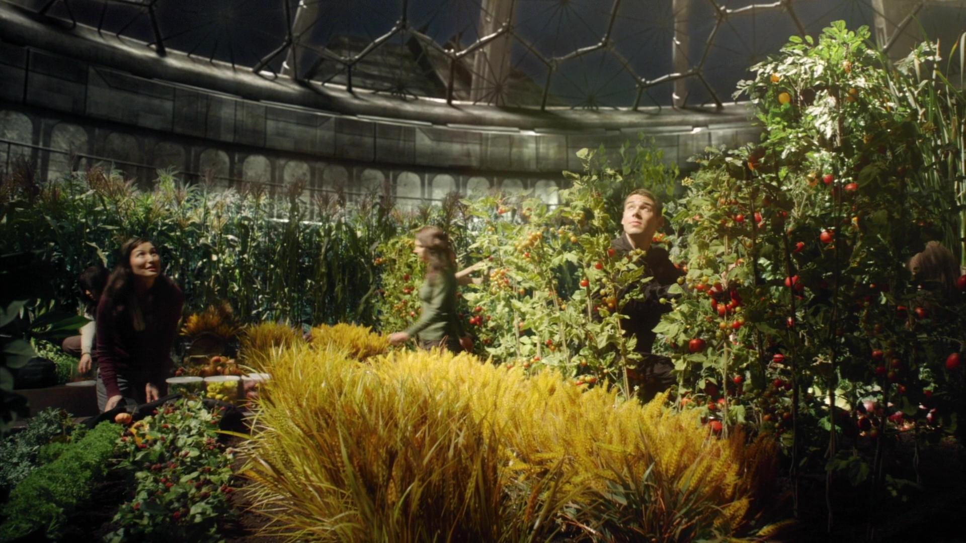File:Destiny garden.jpg