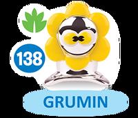 Card s2 grumin