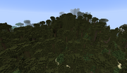 BoskevineSwamp2
