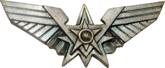 File:Fleet Pin.png