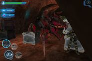 Sti-royalwarriorbug-game-1