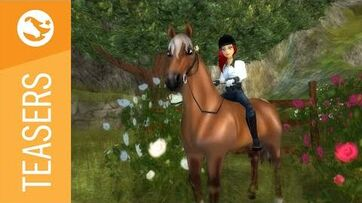 Star Stable Teasers - The new Morgan Horse