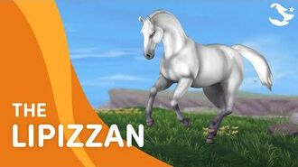 Star Stable Teasers - The Lipizzan Horse