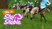 This is Jorvik ✨ - Star Stable Online