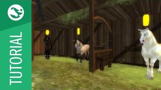 Star Stable Tutorial - Horses