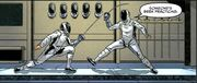 DeSoto & Picard fencing