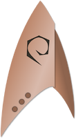 DIS ops cmdr insignia