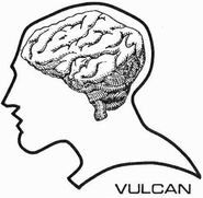Vulcan brain diagram