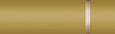 2240s gold officer