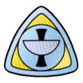 Epsilon9 gold insignia.jpg