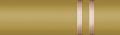 2240s gold captain.png