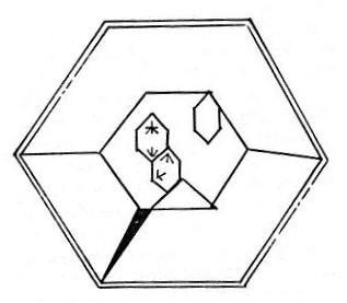 File:Tholian cell.jpg