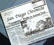 San-Diego-Chronicle