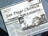 San Diego Chronicle